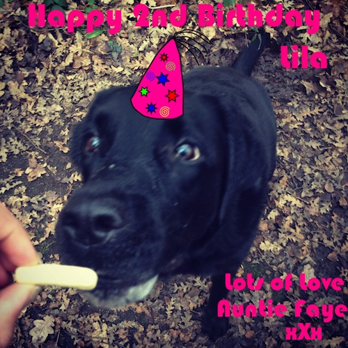 Happy 2nd Birthday Lila