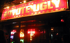 Coyote Ugly Saloon, Coyote Ugly, Bar, Alcohol, Night Out, Blog A Book Etc