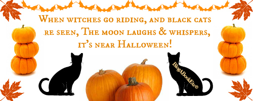 halloween, celebrations, events, black cats, pumpkins, witches, moon, orange, Blog A Book Etc, Fay