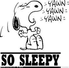 sleep snoopy